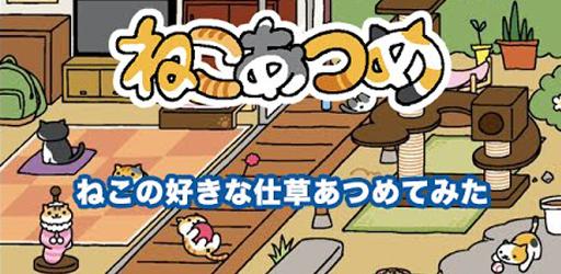 냥덕을 위한 고양이 키우기 게임
