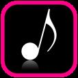 음악 플레이어 (전문)