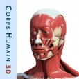 Corps humain 3D gratuit : Anatomie Humaine Interactive