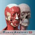 해부학과 생리학 3D 무료 : 인체 모형 - Anatomical Model of the Human Body