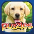 Dog Puzzle Premium