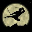 Crazy Ninja Jumping Adventures
