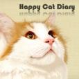 Happy Cat Diary