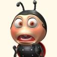 Talking Ladybug-I love you honey