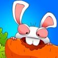 Talking Rabbit Ruru