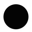 A Noble Circle